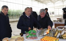 "Visit to ""Greenhouse Kazakhstan"" greenhouse complex"